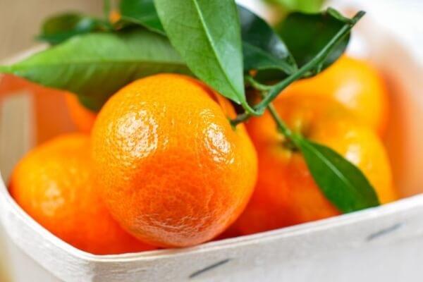 Đây là 4 'siêu' trái cây 'khắc tinh' của ung thư vú, ăn càng nhiều ung thư càng tránh xa - Ảnh 3