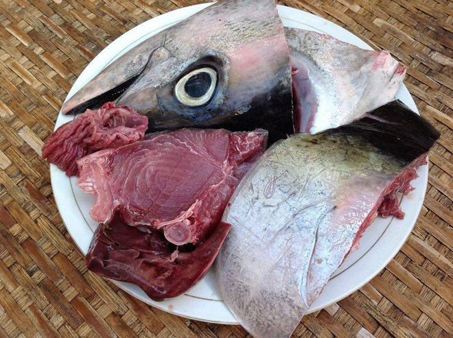 Những bộ phận của cá chứa đầy chất độc, dù có đói mấy bạn cũng không nên 'đụng đũa' nhé - Ảnh 1