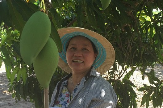 Chị Vui Nguyen - vợ ông Frank Nguyen, bên vườn xoài của trang trại gia đình tại Darwin - Ảnh: ABC