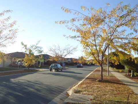 Hình 07: Đường phố ở Úc rất trong lành và sách sẽ. Người dân luôn có ý thức cao trong việc giữ gìn vệ sinh chung. Trong hình là lúc thời tiết đang chuyển sang mùa thu, cây thay là vàng, thời tiết cũng se lạnh hơn.