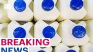 Coles, Woolworths và IGA thu hồi sữa do lo ngại nhiễm khuẩn E.coli