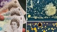 Bật mí nơi chứa đồng tiền bẩn nhất