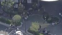 Melbourne: Một sĩ quan cảnh sát bị băng nhóm gốc Phi đâm trong trung tâm thương mại