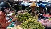 """Mánh khóe """"phù phép"""" hoa quả Trung Quốc thành hàng Úc, Mỹ tại chợ Việt"""