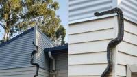 Trăn khổng lồ Úc leo tường như khỉ để tìm cách vào nhà dân