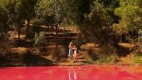 Úc: Hồ nước bất ngờ chuyển màu lạ, người dân ùn ùn kéo đến chụp ảnh
