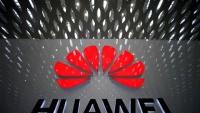 Chi nhánh Huawei tại Úc phải cắt giảm một nửa nhân sự vì bị cấm