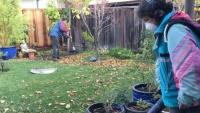 Người Việt bám trụ nghề cắt cỏ ở Mỹ: Cắn răng chấp nhận tiếng 'cướp cơm'