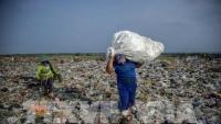 Ngành tái chế rác thải của Úc thất thu hơn 300 triệu đô mỗi năm