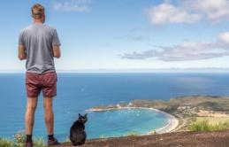 Người đàn ông bỏ việc, bán nhà đi du lịch khắp Úc cùng mèo cưng suốt 3 năm