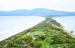 Kỳ lạ cách bảo vệ môi trường tại Bruny Tasmania: Khách du lịch được gợi ý đi vệ sinh vào túi đựng phân chó thay vì vào Toilet