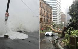 Sau cháy rừng, Úc đối mặt với mưa bão lịch sử trong vòng 22 năm