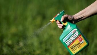 Úc nói gì khi Việt Nam quyết định c.ấm t.huốc d.iệt cỏ glyphosate?